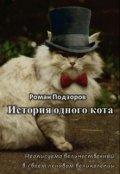 """Book cover """"История одного кота"""""""
