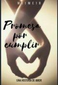 "Portada del libro ""Una promesa por cumplir"""