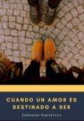 """Portada del libro """"Cuando un amor es destinado a ser"""""""