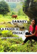 """Portada del libro """"Damary la Pasión de Pineda"""""""