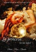 """Portada del libro """"La princesa de las nubes"""""""