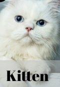 "Portada del libro ""Kitten |  Yoonmin"""