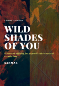 "Book cover ""Wild Shades of You"""