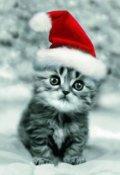 """Portada del libro """"Una Navidad azulada [cuento De Navidad]"""""""