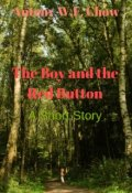 """Book cover """"The Boy and the Red Button"""""""