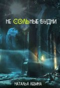 """Book cover """"Не Сольные будни"""""""