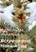 "Book cover ""Встреча под Новый Год"""