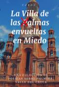 """Portada del libro """"La Villa de las Almas envueltas en Miedo"""""""