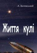 """Обкладинка книги """"Життя кулі"""""""