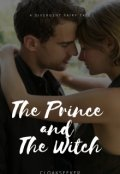 "Book cover ""The Prince and The Witch: A Divergent Fairy Tale"""