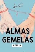 """Portada del libro """"Nefesh © Almas Gemelas """""""