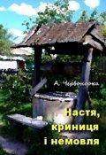 """Обкладинка книги """"Настя, криниця і немовля"""""""