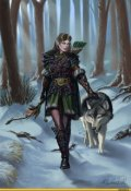 """Book cover """"Воин-волк"""""""