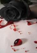 """Portada del libro """"Una Rosa negra por cada corazón roto"""""""