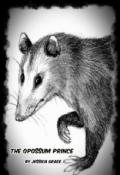 """Book cover """"Opossum Prince"""""""