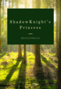 "Book cover ""Shadowknight's Princess """