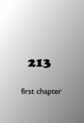 "Book cover ""213"""