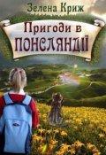 """Обкладинка книги """"Пригоди в Понсляндії"""""""