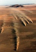 """Portada del libro """"Amos del desierto"""""""