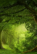 """Portada del libro """"El bosque del olvido."""""""