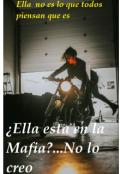 """Portada del libro """"Ella está en la mafia...no lo creo"""""""