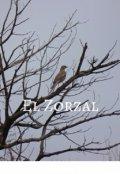 """Portada del libro """"El Zorzal"""""""