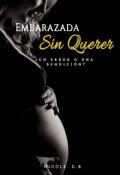 """Portada del libro """"Embarazada sin Querer Editando"""""""