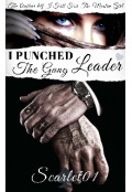 "Book cover ""I Punched The Gang Leader"""