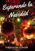 """Portada del libro """"Esperando la Navidad"""""""