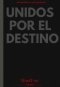 """Portada del libro """"Unidos por el destino """""""