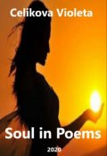 """Book cover """"Soul in Poems"""""""