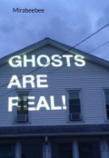 "Book cover ""Ghost are real"""
