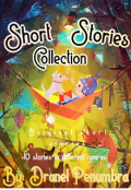 "Book cover ""Short Stories Collection"""