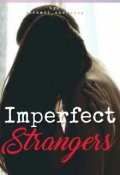 "Book cover ""Imperfect Strangers"""