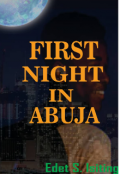 "Book cover ""First Night In Abuja"""