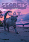 "Book cover ""Secrets of the cat"""