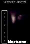"""Portada del libro """"Sorpresa Nocturna"""""""