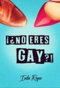 """Portada del libro """"¡¿no eres gay?!"""""""