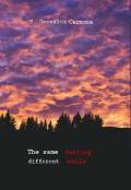 """Portada del libro """"El mismo sentimiento, diferentes almas"""""""
