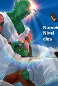 """Portada del libro """"Ángel Ciego 13. Namek Nivel dios"""""""