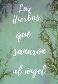 """Portada del libro """"Las Hierbas Que Sanaron Al Angel"""""""