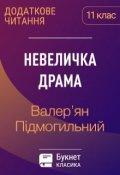 """Обкладинка книги """"Невеличка драма"""""""