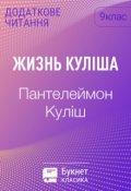 """Обкладинка книги """"Жизнь Куліша"""""""