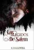 """Portada del libro """"Los Elegidos De Salem"""""""
