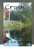 "Book cover ""Crash"""