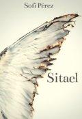 """Portada del libro """"Sitael"""""""
