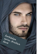 "Book cover ""Book 2 forbidden series :arabian slave """