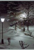 """Обкладинка книги """"Снігова ніч"""""""