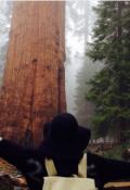 """Portada del libro """"El Bosque Giant """""""