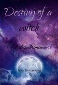 """Portada del libro """"Destiny of a witch: El descubrimiento"""""""